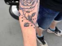 Rose_lowerarm