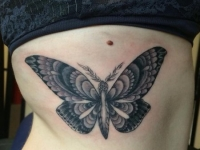 Butterfly_Ribs